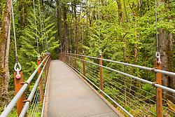United States, Washington, Bellevue. Botanical Gardens, Ravine Experience bridge.