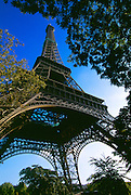 Eiffel Tower and park with blue sky and trees looking up.