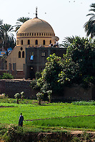 Egypt. Cruising the Nile from Kom Ombo to Luxor, passing Edfu and Esna.