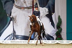 Minderhoud Hans Peter (NED) - IPS Tango<br /> JBK Horse Show Odense 2010<br /> © Hippo Foto - Leanjo de Koster