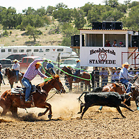 Ed Hawley and Myles John team in the steer roping competition at the Beshbetoh Stampede June 9 in Beshbetoh, Arizona.