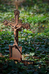 Iron cross crucifix cemetery Vienna ivy old rusty