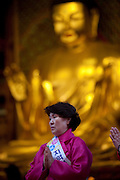 "Frau betet in einem Tempel waehrend der Feierlichkeiten von Buddhas Geburtstag (2. Mai 2009) im Zentrum der koreanischen Netropole Seoul.  <br /> <br /> Woman praying in  a temple in the center of the korean capital Seoul during the celebrations of Buddhas birthday (2nd of May 2009) which is celebrated according to the Lunisolar calendar. This day is called ""Seokga tansinil"", meaning ""the day of Buddha's birthday""."