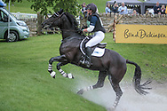SIMPLY SMART ridden by Hazel Towers taking part in the CIC*** cross country on day three of the during the Bramham International Horse Trials 2017 at Bramham Park, Bramham, United Kingdom on 11 June 2017. Photo by Mark P Doherty.