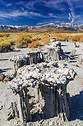 Sand tufa formations on the south shore of Mono Lake, Mono Basin National Scenic Area, California USA