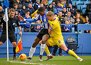Sheffield Wednesday Forward Lucas Joao holds off Leeds United Defender Liam Cooper during the Sky Bet Championship match between Sheffield Wednesday and Leeds United at Hillsborough, Sheffield, England on 16 January 2016. Photo by Adam Rivers.