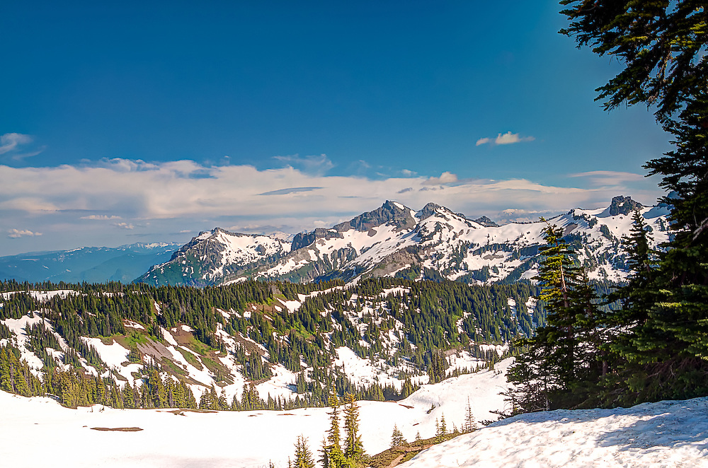 Rolling hills, alpine meadows, and mountain peaks from the tree line on a gorgeous summer day on Mount Rainier's southern face above. It may look like winter, but the abundant wildlife and profusion of brightly colored wildflowers would tell you otherwise.