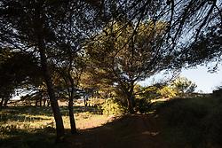 Ex-Cava di Bauxite con laghetto a Otranto