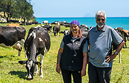 Tunapahore B2A, Hawai<br /> <br /> Ahuwhenua Trophy Excellence in Māori Farming Award 2021 for Dairy. February 2021. Photo by alphapix.nz<br /> <br /> CONDITIONS of USE:<br /> <br /> FREE for editorial use in direct relation the Ahuwhenua Trophy competition. ie. not to be used for general stories about the finalist or farming.<br /> <br /> NO archiving of images. NO commercial use. <br /> Please contact John@alphapix.co.nz if you have any questions