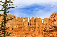 Wall of Windows, Hike the Hoodoos Trek, Bryce Canyon National Park. Photo taken May 14, 2016.