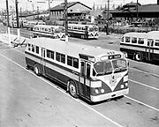 Y-481009-01.  PT Co. new busses. October 9, 1948