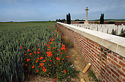 Poppies grow in the shadow of the Sword of Sacrifice which stands in Rancourt Military cemetery one of the many hundreds of Commonwealth War Graves Cemeteries ( CWGC ) on the Somme battlefields of northern France. An unexploded shell from WW1 is placed by the cemetery wall awaiting collection by French Army Bomb squad..COPYRIGHT PHOTOGRAPH BY BRIAN HARRIS  © 2008.07808-579804