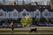 A dog owner pauses before throwing a ball for her pet in Ruskin Park, on 8th August 2018, in London, England.