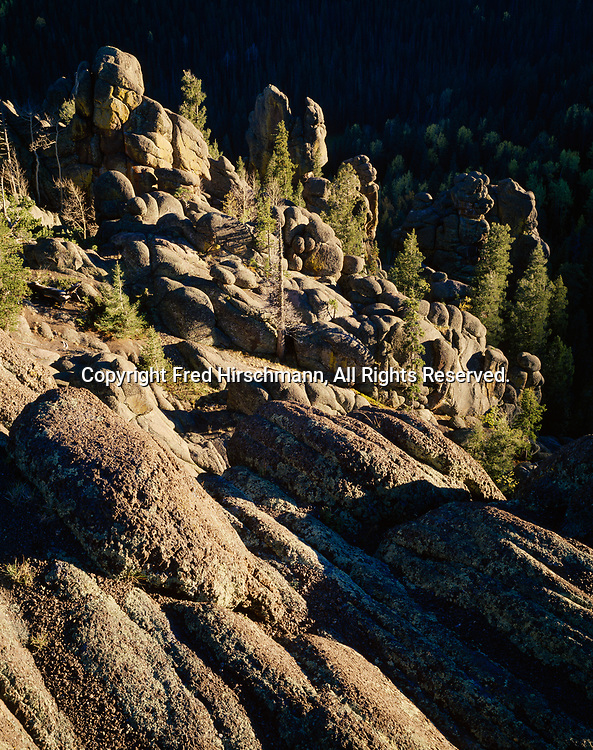 Volcanic hoodoos and spruce, fir and aspen forest in autumn, drainage of the East Fork of the Little Colorado River, Mount Baldy Wilderness, Apache National Forest, Arizona.
