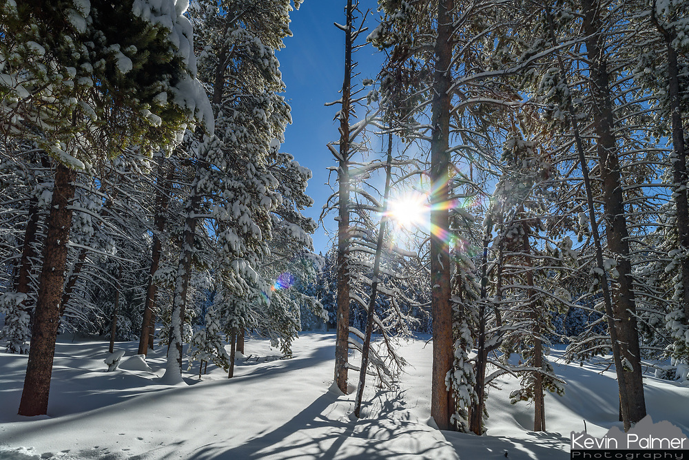 It was a beautiful day to be in the Bighorn Mountains. Fresh snow had fallen the night before and the clouds cleared out before daybreak leaving sunny blue skies.