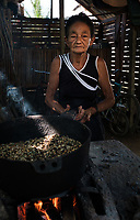 BARACOA, CUBA - CIRCA JANUARY 2020: Cuban woamn roasting cocoa beans in Baracoa. Cocoa farms are spread and widely known in the region. Cocoa and chocolate are one of the products closely linked to these lands identity.