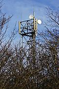 Mobile phone mast, Shipton Under Wychwood, The Cotswolds, United Kingdom
