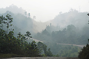 Logging roads. This was originally unspoilt primary rainforest. Marudi and Baram, Sarawak, Malaysia 2015<br /><br />These regions were were part of the world's oldest rainforest, which dates back 160 million years. The indigenous native communities' survival depends on sustainable development of primary rainforest, a biodiversity resource, with countless insects, an array of birds and endangered species, which support one of the most diverse tropical ecosystems in the world. <br /><br />Borneo native peoples and their rainforest habitat revisited two decades later: 1989/1991 and 2012/2014/2015. <br /> <br /> Sarawak's primary rainforests have been systematically logged over decades, threatening the sustainable lifestyle of its indigenous peoples who relied on nomadic hunter-gathering and rotational slash & burn cultivation of small areas of forest to survive. Now only a few areas of pristine rainforest remain; for the Dayaks and Penan this spells disaster, a rapidly disappearing way of life, forced re-settlement, many becoming wage-slaves. Large and medium size tree trunks have been sawn down and dragged out by bulldozers, leaving destruction in their midst, and for the most part a primary rainforest ecosystem beyond repair. Nowadays palm oil plantations and hydro-electric dam projects cover hundreds of thousands of hectares of what was the world's oldest rainforest ecosystem which had some of the highest rates of flora and fauna endemism, species found there and nowhere else on Earth, and this deforestation has done irreparable ecological damage to that region