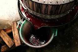 Durante la spremitura il mosto scende e viene raccolto nelle vasche di plastica. Dopo di chè viene spostato nelle vasche grandi per farlo fermentare.