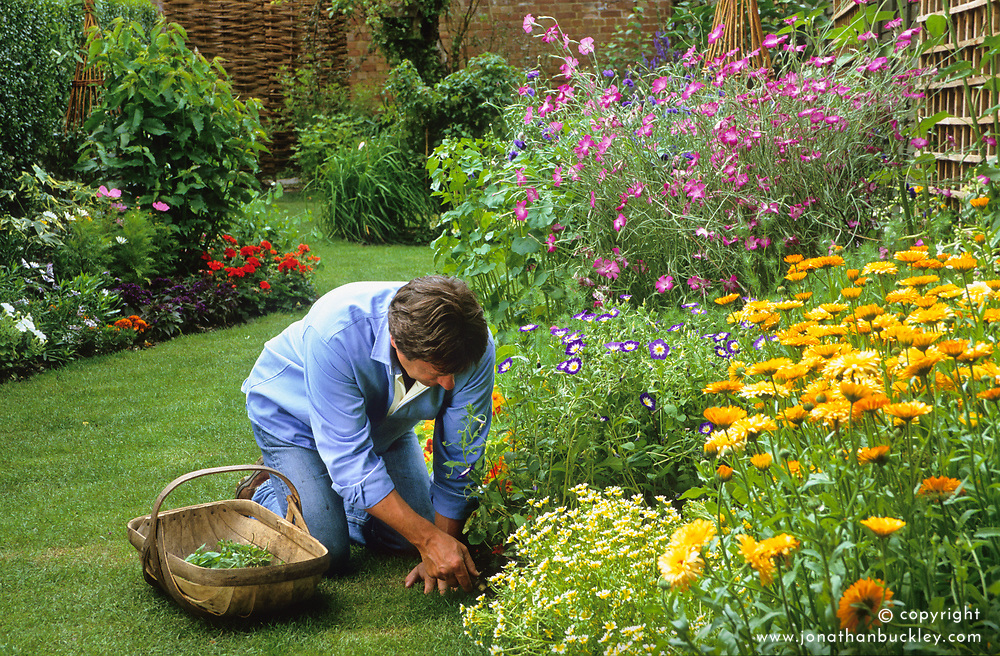 Making a border of annuals<br /> Alan weeding the annual border