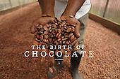 The Birth of Chocolate