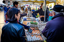 Street market in the Square Charles de Gaulle, Toulouse, France<br /> <br /> (c) Andrew Wilson | Edinburgh Elite media