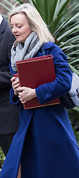 Downing Street, London, March 8th 2016. Environment Food and Rural Affairs Secretary Elizabeth Truss arrives for the weekly UK cabinet meeting at Downing Street. ©Paul Davey<br /> FOR LICENCING CONTACT: Paul Davey +44 (0) 7966 016 296 paul@pauldaveycreative.co.uk