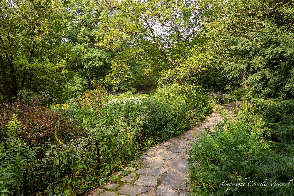 Shakespeare Garden, Central Park