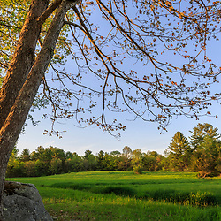 A hay field at the Harriman Farm in Durham, New Hampshire,