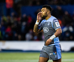 Willis Halaholo of Cardiff Blues<br /> <br /> Photographer Simon King/Replay Images<br /> <br /> European Rugby Champions Cup Round 4 - Cardiff Blues v Saracens - Saturday 15th December 2018 - Cardiff Arms Park - Cardiff<br /> <br /> World Copyright © Replay Images . All rights reserved. info@replayimages.co.uk - http://replayimages.co.uk