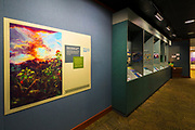 Interpretive displays at the visitor center, Hawaii Volcanoes National Park, Hawaii USA