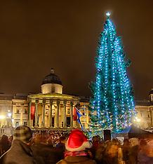 DEC 6 2012 Trafalgar Square Christmas Tree