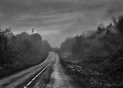 Route Nationale 2, Guyane, 2015.<br /> <br /> Le réseau routier guyanais, peu développé, est apparu dans les années 1970. Principalement constitué d'un axe de près de 450 km (RN1/RN2, il relie Saint Laurent du Maroni à Saint-Georges de l'Oyapock, ou plus globalement reliant les frontières respectives du Suriname à l'Ouest et du Brésil à l'Est.<br /> <br /> Les routes traversent maintenant les grands fleuves guyanais sur des ponts impressionnants. Avant leur récente construction, des bacs transportaient les personnes, marchandises et véhicules d'une rive à l'autre le long de la piste. D'abord exclusivement situé sur le littoral, le réseau est constitué par la seule la Route Nationale 1 et dessert les zones les plus peuplées : Cayenne, Kourou et Saint Laurent du Maroni. <br /> <br /> La construction en 2003 d'un pont qui traverse l'Approuague à Régina permet le désenclavement de l'Est guyanais avec la construction de la Route Nationale 2 qui relie Cayenne à Saint-Georges de l'Oyapock. Terminée en 2005, en saison des pluies la route subit une dégradation continuelle et plusieurs portions sont régulièrement impraticables.<br /> Prolongée par la BR-156 jusqu'à Macapa sur le delta de l'Amazone, la RN2 rejoindra Oiapoque, ville brésilienne frontalière qui fait face à Saint-Georges, lorsque le pont sur l'Oyapock sera inauguré. Terminé depuis trois ans, il n'est toujours pas ouvert à la circulation, après plusieurs annonces, plus aucune date d'inauguration n'est officiellement retenue.