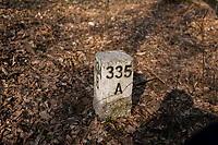 03.2015 Puszcza Bialowieska N/z slupek z numerami oddzialow lesnych fot Michal Kosc / AGENCJA WSCHOD