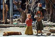 Children and a dog, Paro, Bhutan