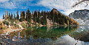 Larch tree needles turn yellow in the first half of October on Blue Lake Trail #314, Okanagon National Forest, North Cascades Highway 20, Washington, USA.  Panorama stitched from 6 images.