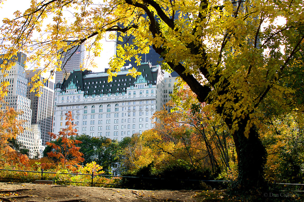 """Photograph by © Dan Callister <br /> www.dancallister.com<br /> A view of The Plaza Hotel from within Central Park November 11, 2016 in Manhattan, New York City. """"A moment of calm in a crazy world""""<br /> [Non-Exclusive]<br /> [ Pictures]<br /> **© DAN CALLISTER. FEE MUST BE AGREED BEFORE USAGE. NO WEB USAGE WITHOUT APPROVAL. ALL RIGHTS RESERVED** <br /> Tel: +1 347 649 1755<br /> Mob: +1 917 589 4976<br /> E-mail: dan@dancallister.com<br /> Web:  www.dancallister.com<br /> 3149 41st St, #3rd Floor, Astoria, NY 11103 USA<br /> Photograph by © DAN CALLISTER  www.dancallister.com"""