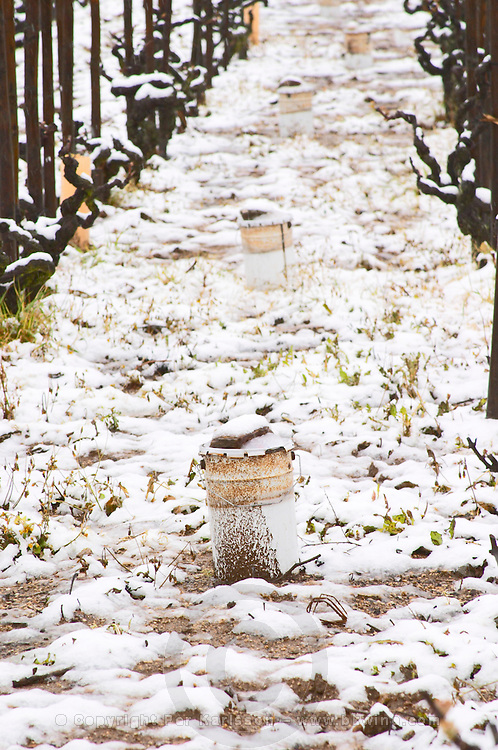 Cornas. Tin buckets in the vineyard, possibly used for burning kerosen in spring to avoid frost in the vineyard. Vineyards under snow in seasonably exceptional weather in April 2005.  Cornas, Ardeche, Ardèche, France, Europe