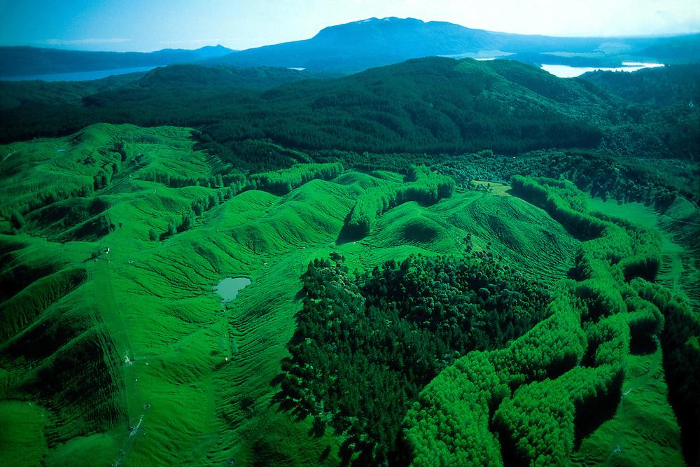 Aerial view of landscape near Rotorua (North Island), New Zealand