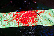 Blood on a tarp at the Goat Meat Store, owned by Ibrahim Swara-Dahab, in Phoenix, AZ. Swara-Dahab came to the United States from Somalia in 1998. He has built a thriving business as a Halal butcher and provides freshly butchered goats and sheep killed following the precepts of Muslim tradition. His business not only caters to Muslims in the Phoenix area but also to refugees and immigrants from Africa and Asia. His small butcher shop is on the Gila River Indian Reservation, about 100 yards from the Phoenix city limits and doesn't have either running water or electricity.    Photo by Jack Kurtz / ZUMA Press
