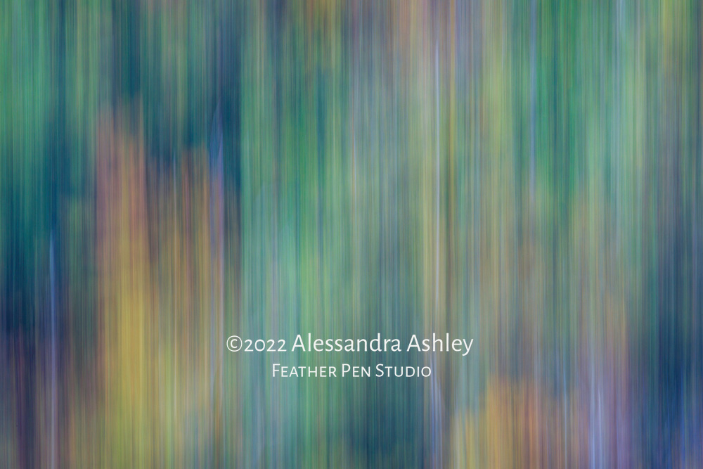 Foliage of the Mohican Valley, abstract created with long exposure tilt, cool tones.