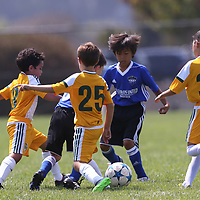Castro Valley Soccer Club in a Soccer Tournament at Burlingame Soccer Complex, Burlingame CA on 8/19/17. (William Gerth/www.williamgerth.com)