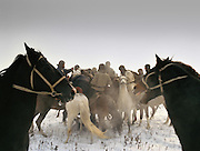 Buzkachi (central asian horse game) season starts in winter in Tajikistan, Dushanbe. En route to Afghanistan's Wakhan Corridor.