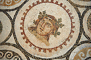 Picture of a Roman mosaics design, from the ancient Roman city of Thysdrus, Bir Zid area. 3rd century AD. El Djem Archaeological Museum, El Djem, Tunisia. .<br /> <br /> If you prefer to buy from our ALAMY PHOTO LIBRARY Collection visit : https://www.alamy.com/portfolio/paul-williams-funkystock/roman-mosaic.html . Type - El Djem - into the LOWER SEARCH WITHIN GALLERY box. Refine search by adding background colour, place, museum etc<br /> <br /> Visit our ROMAN MOSAIC PHOTO COLLECTIONS for more photos to download as wall art prints https://funkystock.photoshelter.com/gallery-collection/Roman-Mosaics-Art-Pictures-Images/C0000LcfNel7FpLI