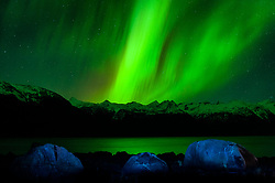 A spectacular display of the Aurora Borealis or as it is commonly called, the northern lights, occurred the evening of November 8 through the early morning of November 9, 2013 over Sinclair Mountain and other mountains in the Kakuhan Range at Haines, Alaska. The luminous glow in the upper atmosphere stretched across the skies above the Lynn Canal from Skagway to Juneau. The bottom edge of an aurora is typically 60 miles high with the top edge at an altitude of 120 to 200 miles, though sometimes high altitude aurora can be as high as 350 miles. The collision of sun storm electrons and protons with different types of gas particles in Earth's atmosphere cause the different colors. Green, the most common color, is caused by the collision of electrons with atoms of with atomic oxygen. *** EDITORS NOTE: Blue rocks are result of use of tungsten white balance at time of image capture. Boulders in foreground were lit with a flashlight during time exposure***