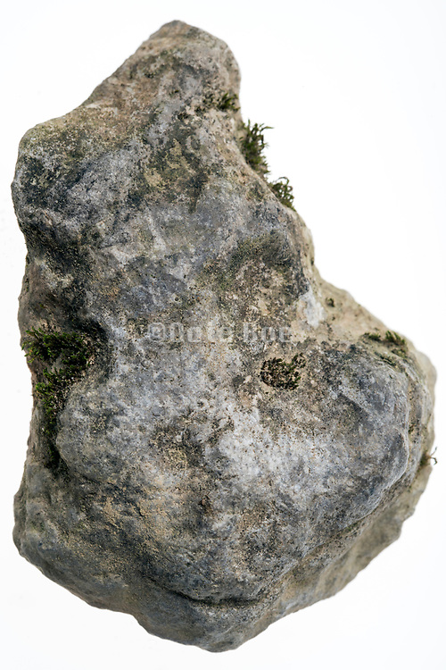 still life of natural  formed stone pebble