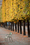 Chairs in the gardens and the grounds of the Louvre Palace complex in the centre of Paris, France