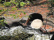 A foam layer cake spins in a pothole eroded into Nonesuch Shale rock on the Presque Isle River before flowing into Lake Superior. Porcupine Mountains Wilderness State Park, Michigan, USA. Tannins leached from Cedar, Spruce and Hemlock trees color the water amber and brownish green. Churned soft water (having low mineral content) creates much foam.