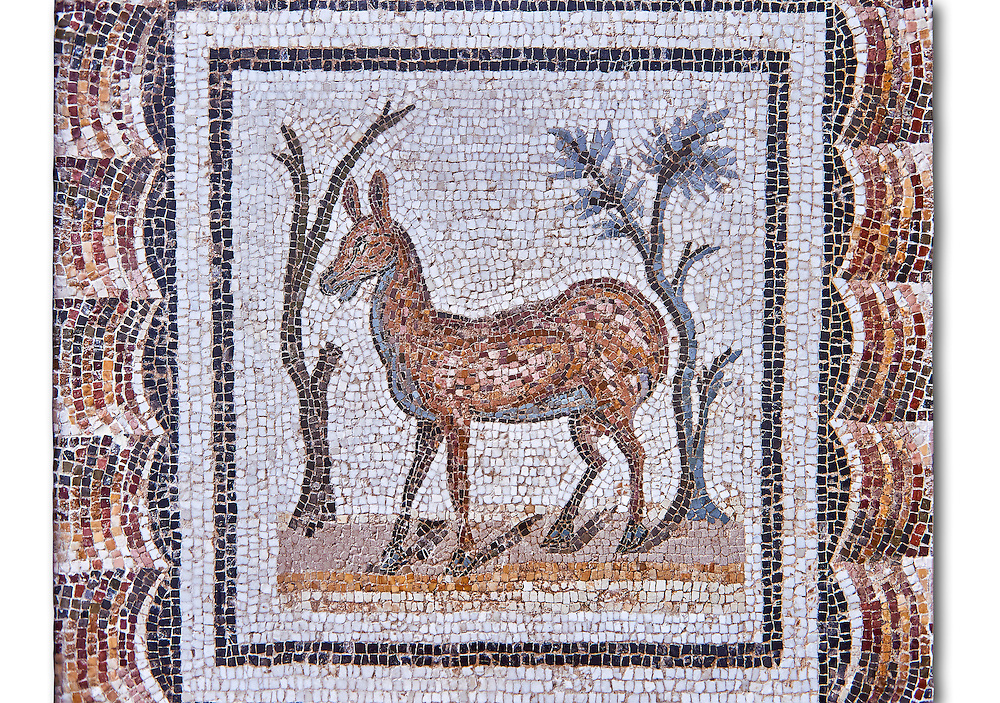 3rd century AD Roman mosaic depiction of two deer between two shrubs. Thysdrus (El Jem), Tunisia.  The Bardo Museum, Tunis, Tunisia. .<br /> <br /> If you prefer to buy from our ALAMY PHOTO LIBRARY  Collection visit : https://www.alamy.com/portfolio/paul-williams-funkystock/roman-mosaic.html - Type -   Bardo    - into the LOWER SEARCH WITHIN GALLERY box. Refine search by adding background colour, place, museum etc<br /> <br /> Visit our ROMAN MOSAIC PHOTO COLLECTIONS for more photos to download  as wall art prints https://funkystock.photoshelter.com/gallery-collection/Roman-Mosaics-Art-Pictures-Images/C0000LcfNel7FpLI