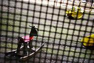 Casa Circondariale San Vittore, Sezione femminile del carcere per le madri detenute con figli piccoli.  Female section of the San Vittore prison held for mothers with young children